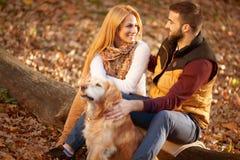Романтичные пары при собака сидя на дереве, backgr леса осени стоковые фото