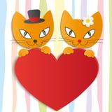 Романтичные пары 2 любящих котов - иллюстрация,  Стоковые Изображения