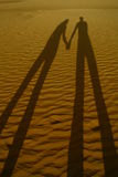 романтичные тени Стоковые Изображения