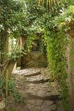 Романтичный английский сад коттеджа стоковая фотография rf