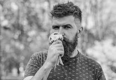 Романтичный битник сделал букет, зеленую предпосылку природы, defocused Концепция ароматности Человек с бородой и усик на затишье стоковое фото rf