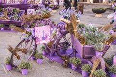 Романтичный винтажный велосипед стоковые фотографии rf