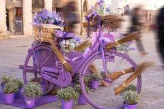 Романтичный винтажный велосипед стоковые изображения