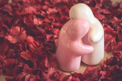 Романтичный влюбленности в дне валентинки Стоковые Фотографии RF