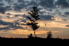 Романтичный заход солнца с черным силуэтом на переднем плане стоковое фото
