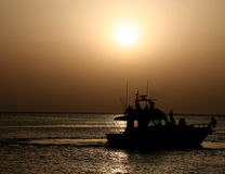 романтичный заход солнца Стоковые Изображения RF