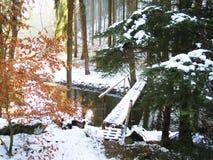 Романтичный мост зимы Стоковые Изображения