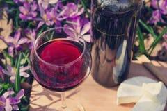 Романтичный обедающий с красным вином и сыром Стоковые Фото