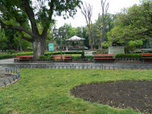 Романтичный парк стоковое изображение rf