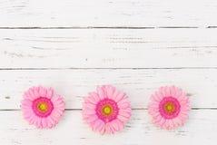Романтичный пинк цветет украшение на белой деревянной предпосылке для день ` s Wedding или валентинки Стоковые Фото