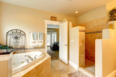 Роскошная ванная комната с водоворотом и ливнем Стоковое Изображение RF