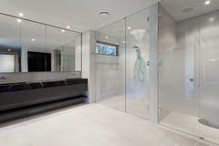 Роскошная ванная комната стоковое изображение