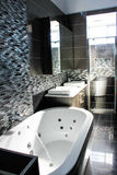 Роскошная ванная комната Стоковое Изображение RF