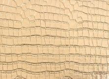 Роскошная золотистая предпосылка кожи крокодила Стоковые Изображения