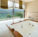 Роскошная квартира, ванная комната стоковое фото rf