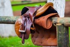 Роскошная кожаная седловина для верховой езды Стоковая Фотография