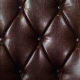 Роскошная коричневая кожа Стоковые Изображения RF