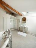 Роскошная классицистическая ванная комната Стоковые Изображения