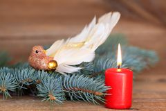Роскошная пташка рождества украшения Стоковая Фотография RF