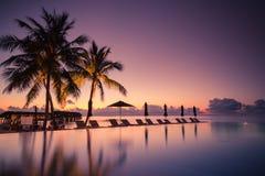 Роскошная сцена бассейна пляжа Пальмы и пейзажный бассейн на пляже Мальдивов Стоковые Изображения RF