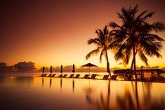 Роскошная сцена бассейна пляжа Пальмы и пейзажный бассейн на пляже Мальдивов Стоковое Фото