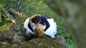 Роскошная счастливая белокурая невеста и стильный groom нежно целуют в зеленом лесе лета, нежном моменте Взгляд сверху акции видеоматериалы
