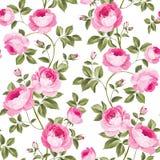 Роскошное розовое wallapaper Стоковое Изображение