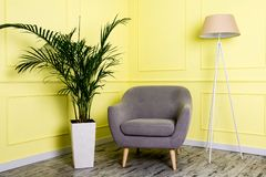 Роскошное серое кресло в классическом стиле в комнате с пальмой в вазе и лампе пола стоковые фотографии rf