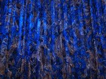 Роскошно украшенный занавес в театре Стоковые Фото