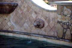 Роскошные испанские языки вводят бассейн в моду с роскошным фонтаном характеристики воды на шикарной вилле с видом на океан в Los Стоковое Фото