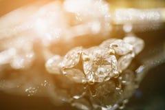 Роскошные кольца с бриллиантом ювелирных изделий с отражением на черноте Стоковые Изображения RF