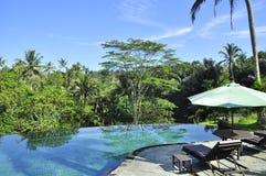 Роскошный бассейн курорта отступления в середине тропическое forrest стоковые фотографии rf