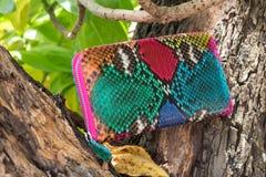 Роскошный бумажник кожи змейки на деревянной предпосылке Портмоне цвета дорогого питона snakeskin multy Стоковое Изображение RF