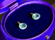 Роскошный голубой аквамарин и голубой и фиолетовый случай ювелирных изделий Стоковые Фото