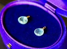 Роскошный голубой аквамарин и голубой и фиолетовый случай ювелирных изделий Стоковое фото RF