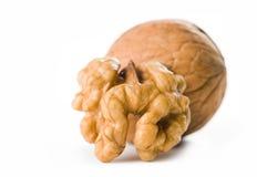 Роскошный грецкий орех. Стоковые Фотографии RF