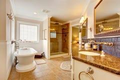 Роскошный интерьер ванной комнаты Стоковые Фото