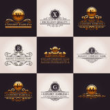 Роскошный комплект логотипа Каллиграфическая картина элегантная иллюстрация штока