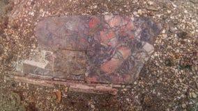 Роскошный мраморный настил в императоре Claudio's Ninfeum подводно стоковая фотография