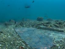 Роскошный мраморный настил в императоре Claudio's Ninfeum подводно стоковые фото