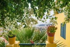 Роскошный дом с цветочным садом и взглядом океана Стоковая Фотография