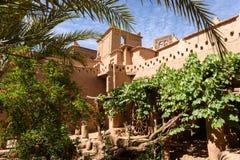 Роскошный сад Kasbah Amridil, Марокко Стоковые Фотографии RF