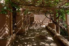 Роскошный сад Kasbah Amridil, Марокко Стоковая Фотография