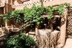 Роскошный сад Kasbah Amridil, Марокко Стоковое Изображение RF