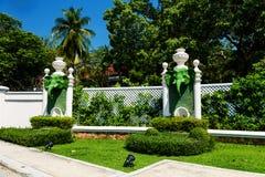 Роскошный сад с головой слона Стоковые Изображения RF
