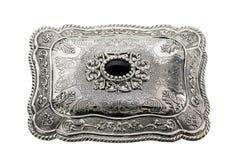 роскошный серебр Стоковое фото RF