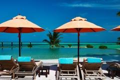 Роскошный тропический бассейн стоковое изображение rf
