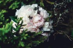 Роскошный bridal букет белых пионов в coniferous кустах Стоковая Фотография