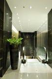 роскошь интерьера гостиницы эскалатора Стоковые Изображения