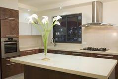 роскошь кухни конструкции Стоковое фото RF
